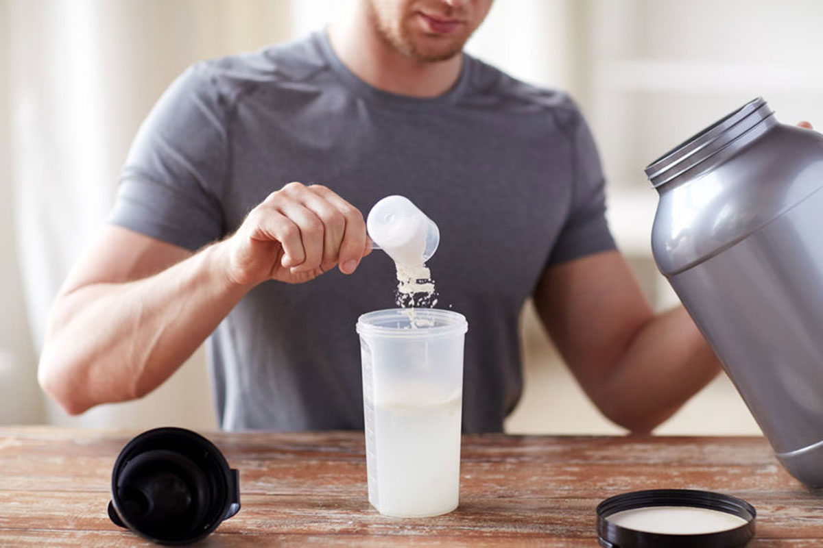 Top Protein Powder Picks